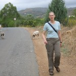 Verspielte Hunde - Auf dem Weg zum Wasserfall Moinhos da Rocha