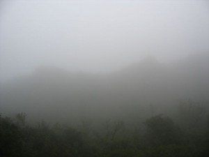 Rocha da Pena im Nebel
