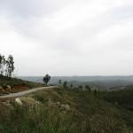 Berglandschaft - auf dem Weg vom Monchique zur Westküste